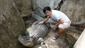 セブ動物園(Cebu Zoo)ワニ