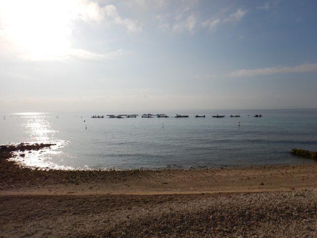 オスロブ(Oslob)ビーチ