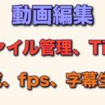動画編集 ファイル管理